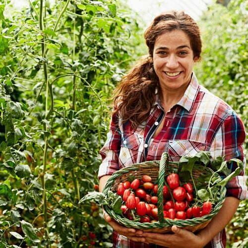 Curs Lucrator in Cultura Plantelor